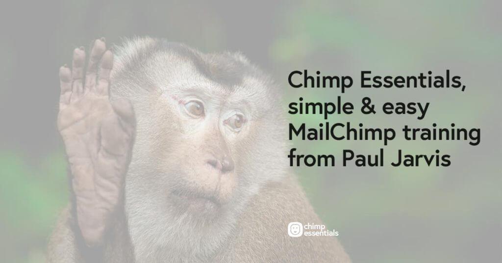 Best Online Business Courses Chimp Essentials