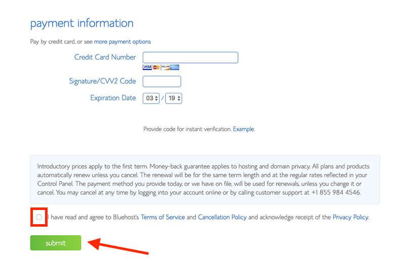 Final Step of Billing Information on Bluehost (Payment Information Screenshot) Example