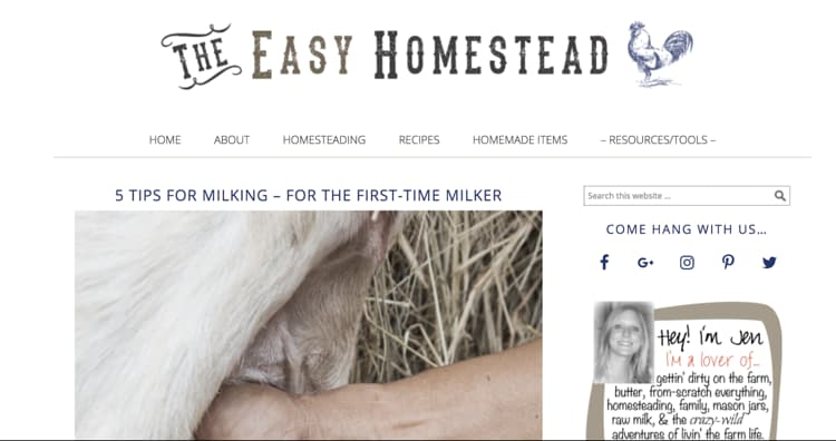 How to Name Your Blog Example The Easy Homestead