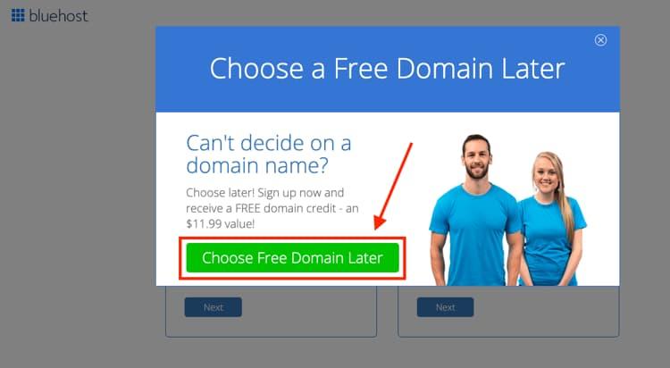 Scegli il tuo piano di hosting del sito web e il nome del dominio Scegli più tardi