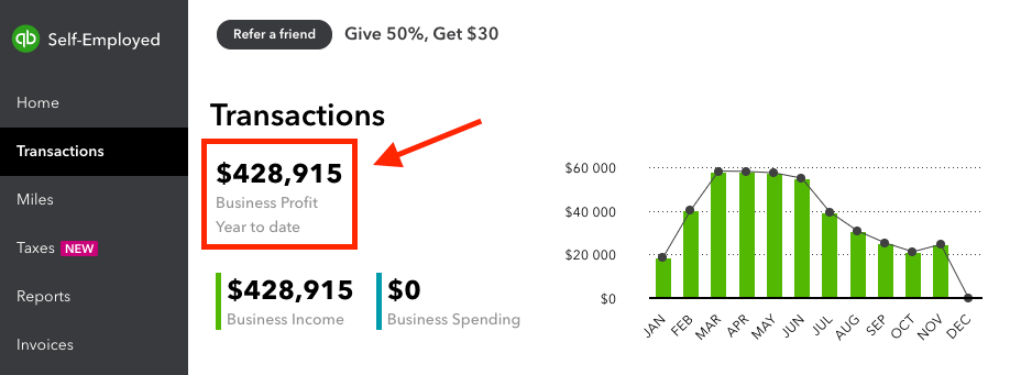 How to Make a Blog and Profit (Quickbooks Screenshot) Revenue Figures This Year