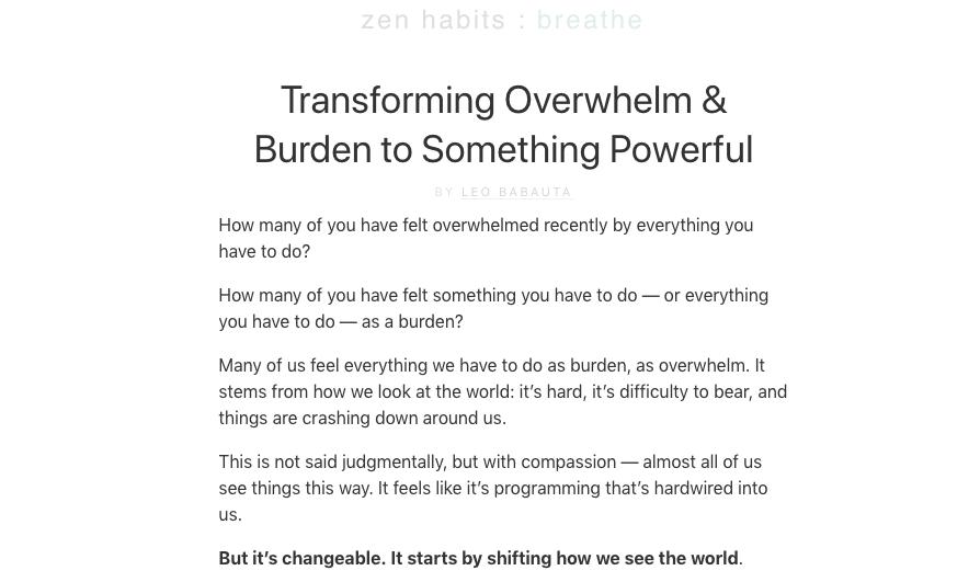 Blog di nicchia ZenHabits Esempio nello spazio Mindfulness