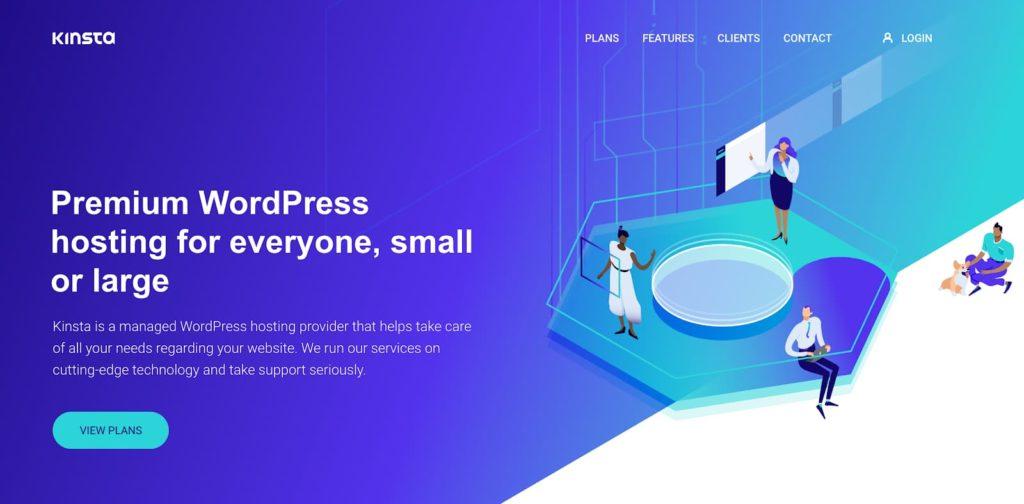 best web hosting plans kinsta 1