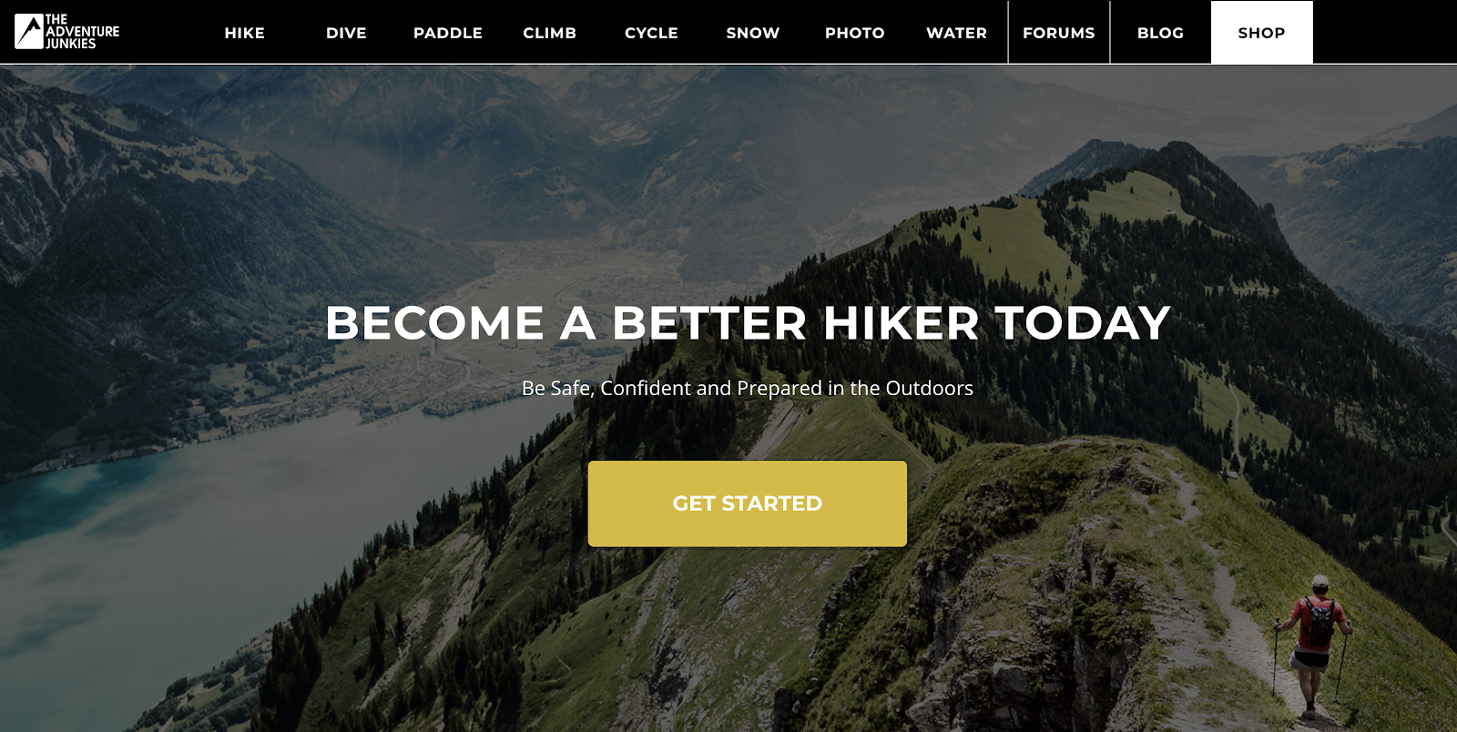 Adventure Junkies Homepage Screenshot (and Blog Niche Example)