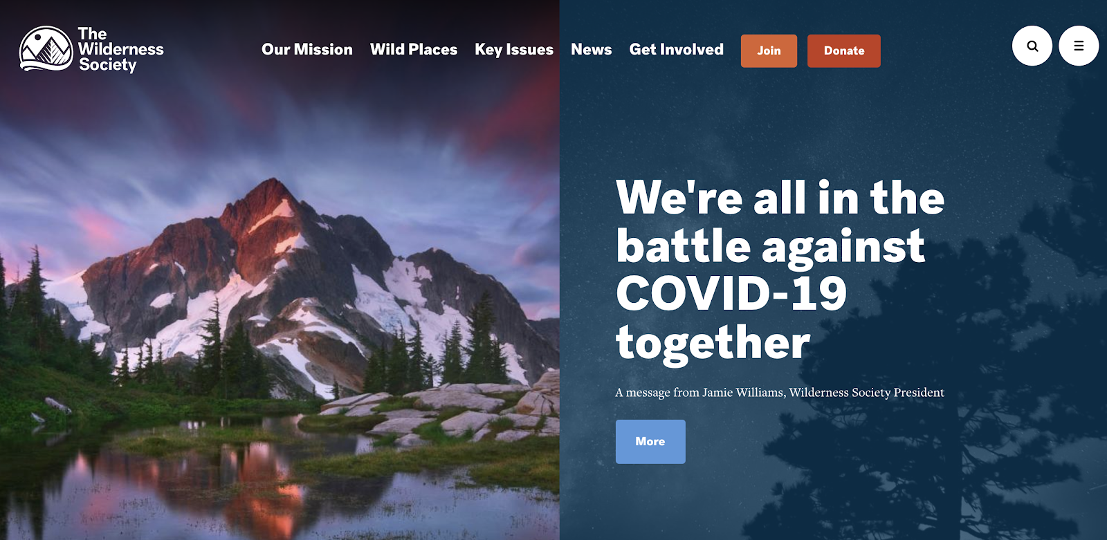 The Wilderness Society Call to Action Example (Homepage) CTA Screenshot