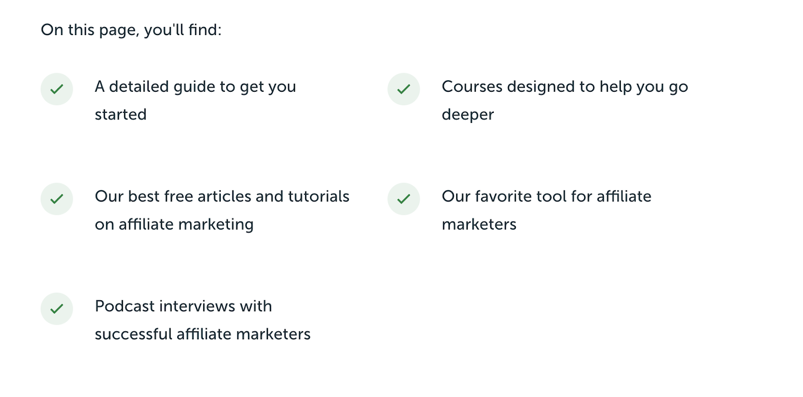 SPI Landing Page (Blog Layout Example) for Affiliate Marketing Topics