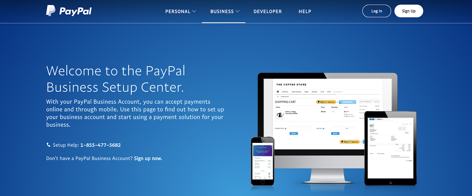 PayPal Business (Homepage Screenshot) for Bloggers