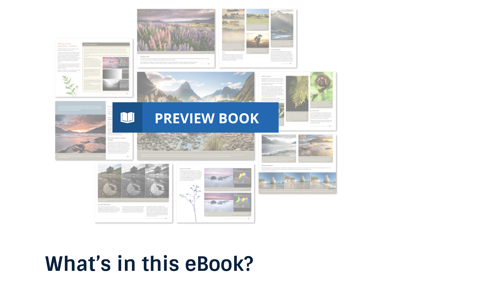 Digital Photography School eBook Example (Screenshot) and Preview Image