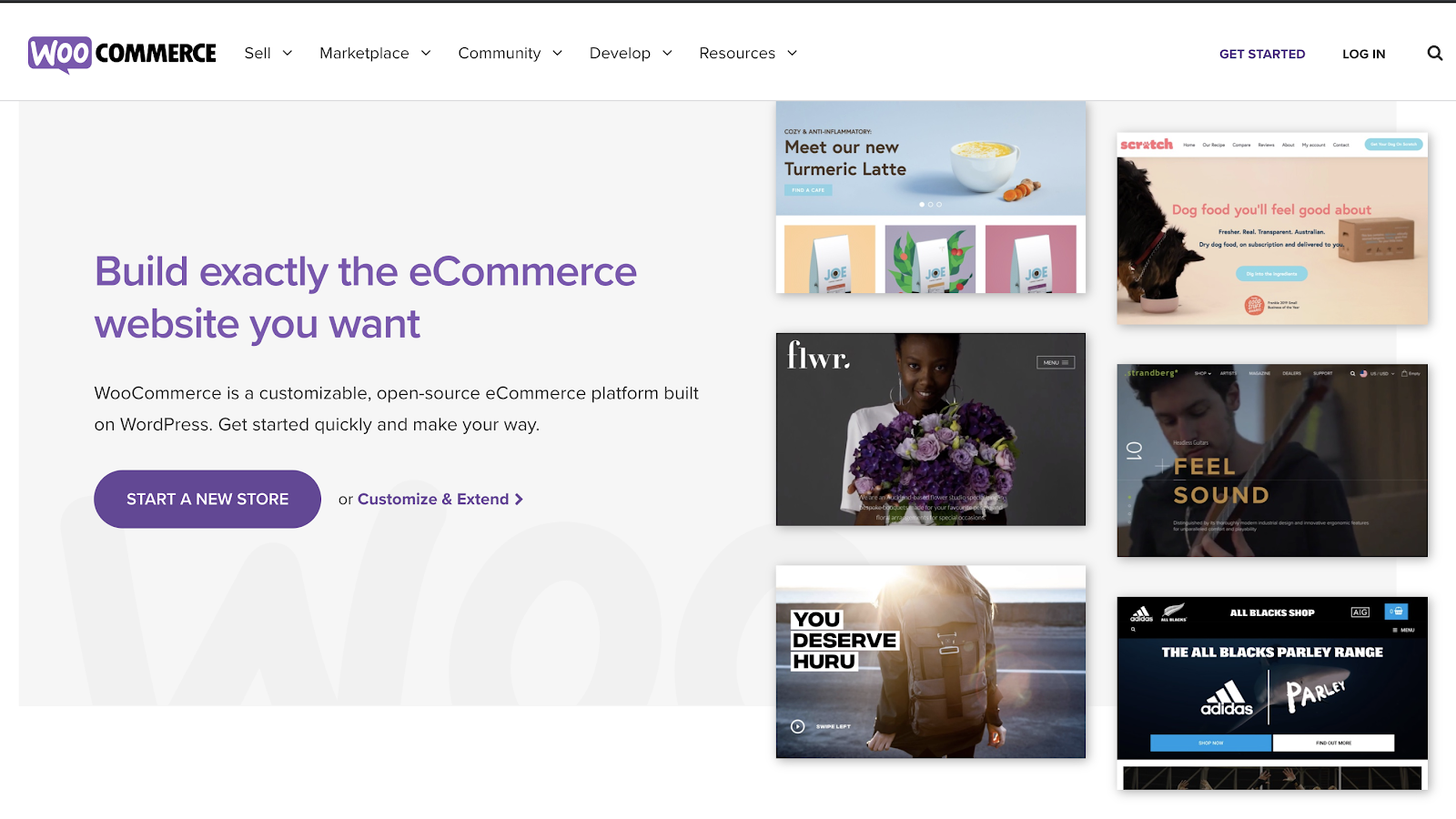 WooCommerce Best eCommerce Website Builders (Homepage Screenshot)