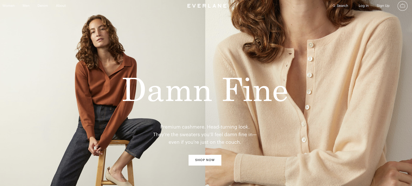 Everlane eCommerce Website Example (Screenshot of Homepage)